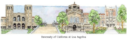 UCLA - Collegiate Sculptured Ornament by Sculptured Watercolor Ornaments