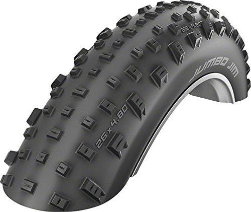 SCHWALBE Jumbo Jim Evolution LiteSkin Folding Tire 4.8 x 26 [並行輸入品] B078J2YMGT