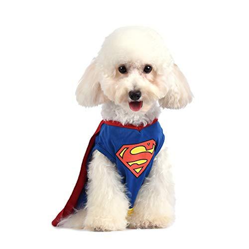 X Small Dog Halloween Costumes (DC Comics Superman Dog Costume   Superhero Costume for Dogs   Dog Halloween Costume,)