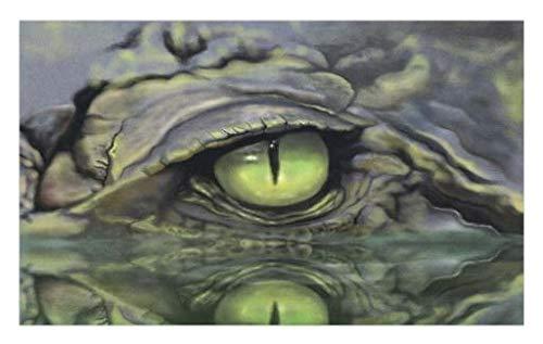 Hunter Eye Care - 8