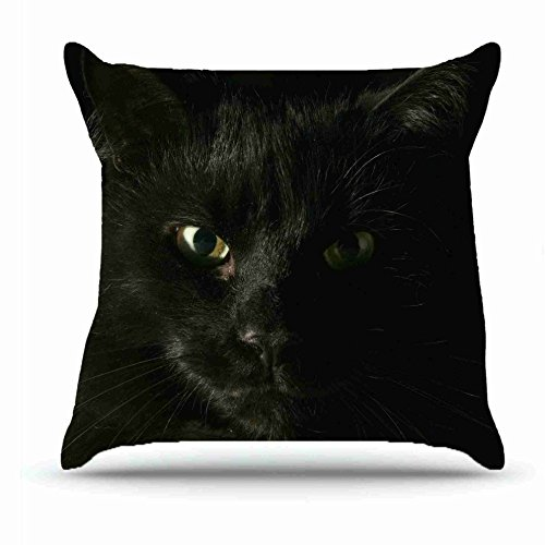 Throw Pillowcase 18 X 18 Inches Cotton Pillowcases Decorative Pillow Cover Case with Hidden Zipper Cushion Covers - Animals cat face s bold dark eyes shadow For Indoor