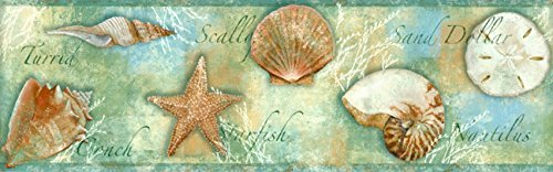 CT46052B Seashells Border from Chesapeake