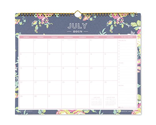 Day Designer for Blue Sky 2018-2019 Academic Year Monthly Wall Calendar, Twin Wire Binding, 15