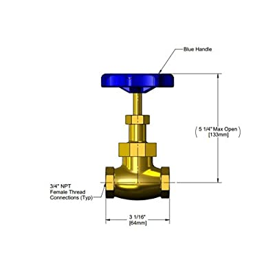 "T&S Brass 006648-20B Globe Valve, 3/4"", Blue Handle from T&S Brass"