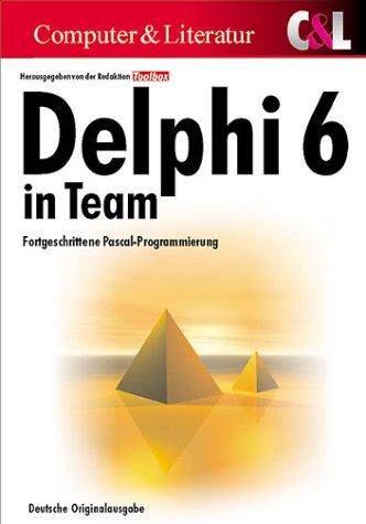Delphi 6 in Team, (inkl. CD)