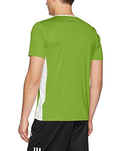 Adidas Green 18 Uomo white shirt T Entrada Rave CCx1SBq
