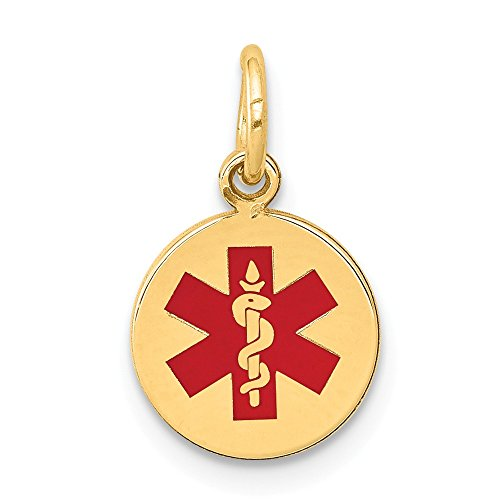 (14K Yellow Gold Medical Jewelry Pendant 9.7 mm 12.1 mm Red Medical Alert Pendants & Charms Jewelry)