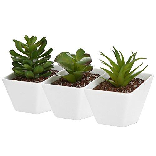 White Ceramic Angle Design Mini Succulent Planter Pots, Small Plant Containers, Set of 3