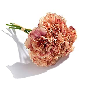 5 Heads Fresh Artificial Flower Carnation Silk Flower Fake Plant for DIY Mother's Day Flower Wedding Home Party Decoration 4 41
