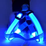 Glumes LED Light Up Dog Harness No-Pull Pet Harness Adjustable Outdoor Pet Luminous Chest Strap for Dogs Easy Control for Small Medium Large Dogs Best Pet Supplies