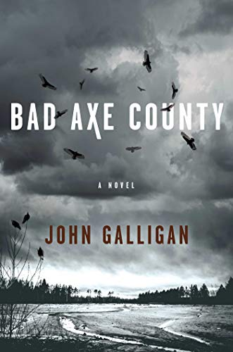 Image of Bad Axe County: A Novel