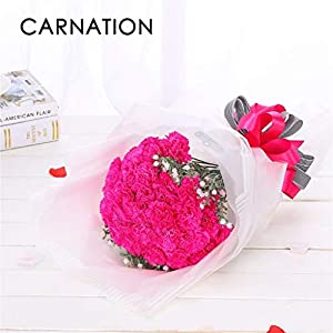 Tuscom Artificial Flowers, 10PCS Fake Silk Carnations Flowers Plastic Artificial Hydrangea Bridal Wedding Bouquet Floral Arrangement for Mother's Day Birthday Weddings Party Home Decor 84