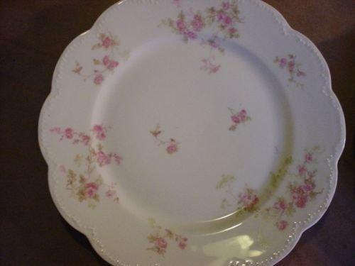 Antique Haviland & Co. Limoges France Fine Porcelain China Pink Wild Roses 9 3/4