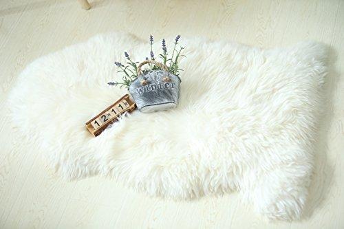 Fur Pelt (Buggcat Genuine Australian Natural Sheepskin Rug One Pelt Natural Fur Ivory (White) 2ft x 3ft)