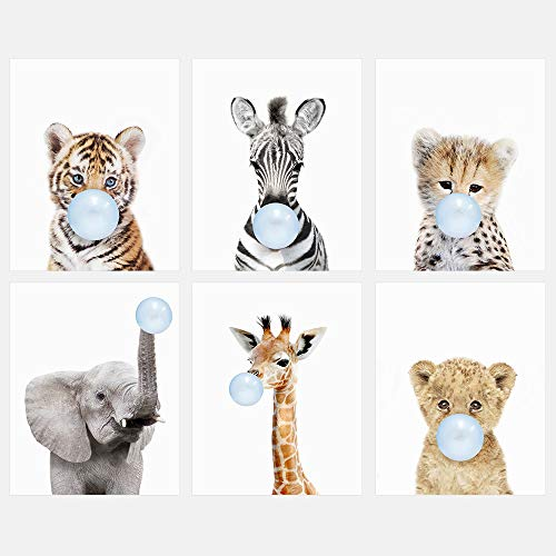 Safari Bubble Gum Animal 8x10 Print Set of 6 - Adorable Furry Baby Animal Portraits - Tiger Cub, Zebra, Lion Cub, Elephant, Giraffe, Cheetah - Nursery Decor - UNFRAMED PRINTS