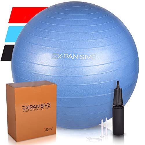 Expansive Living Anti Burst Exercise Ball (Blue, 65cm) - 2,000lbs STATIC STRENGTH STABILITY, PROFESSIONAL GRADE. Balance Ball | Physio Ball | Swiss Ball | Yoga Ball | Birthing Ball | Office Ball Chair