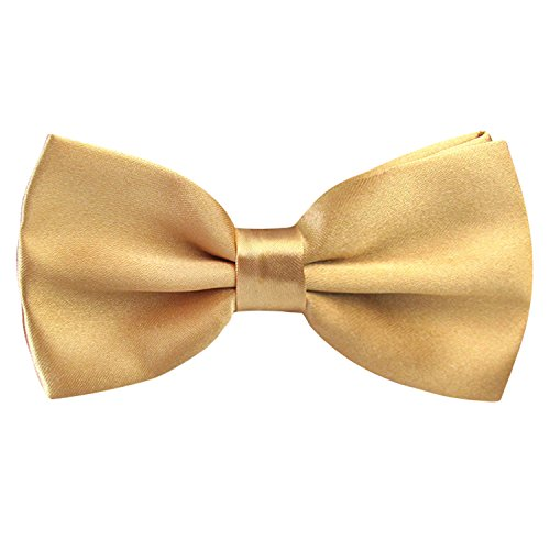 Price comparison product image Men's Rayon Yarn Adjustable Neck Holiday Bow Ties (Champagne)