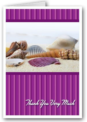 - Sea Shell Thank You Note Card - 10 Boxed Cards & Envelopes