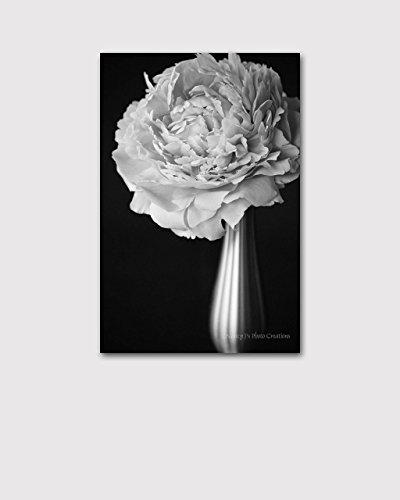 Amazon Pink Flower Print On CANVAS Peony Photo Black And White