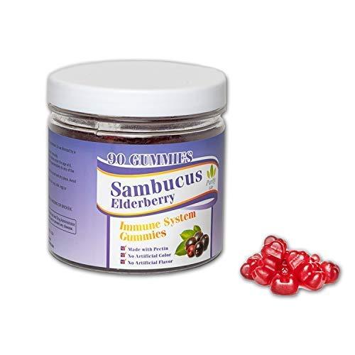 Elderberry Gummies Sambucus for Kids and Adults | 90 Count Vitamin C Immune System Booster | Allergy Cold Relief Black Supplement Multivitamin Zinc for Children Pediatric Medicine Blueberry Flavor