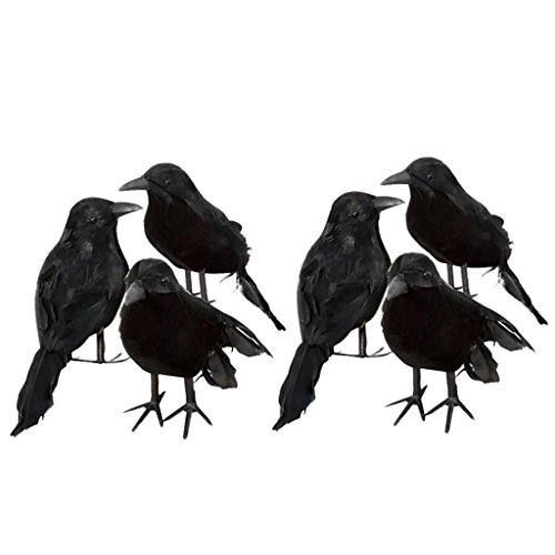 Fityle 6pcs Artificial Realistic Halloween Decor Bird Fake Black Feathered -