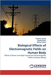 effects of computer in human beings Read this article to learn about the effects of radiation on human body but risks of genetic effects in human beings are comparatively low than the risks of.