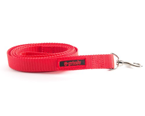 The Jenny Dog Leash for Blind, Elderly and Disabled Pets. Protect from Falling, Bumping, Being Frightened. They Feel…
