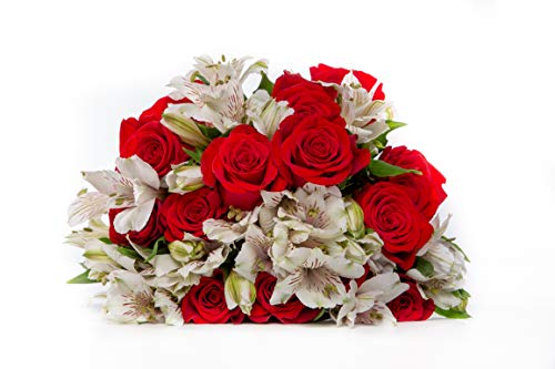- 24 Stem Red Rose White Alstroemeria Peruvian Lily Bouquet with One Dozen Roses and One Dozen Princess Lilies for Centerpieces and Long Vase Life, Vase Not Included