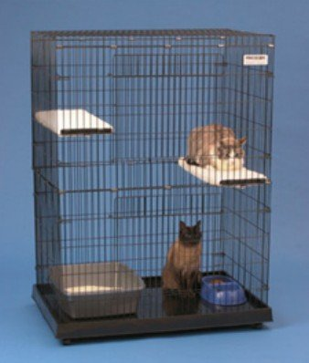 Precision Pet 1720-17025 Kitty Condo With Plastic Base- Large – 48 x 24 x 36 Inch, My Pet Supplies