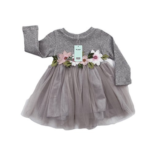 Toddler Kids Girls Fall Jersey Dress Long Sleeve Floral Tulle Cap Tutu Dresses Outfit (18-24months, Grey)
