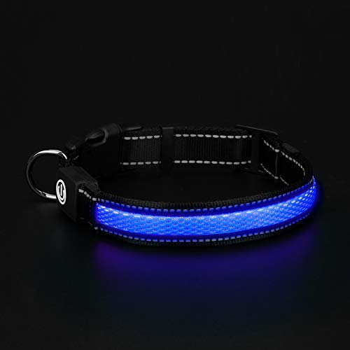 HongTu LED Dog Collar for Night Visible Safety Walking,USB Rechargeable,3 Mode Glowing Flashing Light (M(16