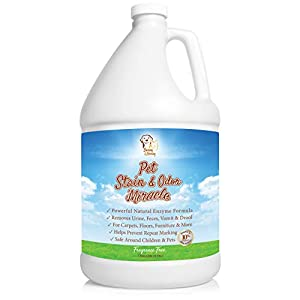 Pet Stain & Odor Miracle - Enzyme Cleaner for Dog and Cat Urine, Feces, Vomit, Drool (Fall Spice Scent, 1 Gallon) 2
