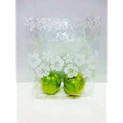 "Small 50 Pcs. Lin NaDa Treat Goody Plastic Bag 8""Wx12 ""Hx4"" Deep With Die Cut Handle (Hibiscus 8x12-G)"