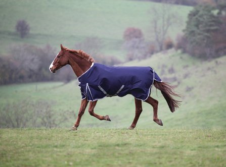 Shires Highlander 600D Turnout Blanket – 200g