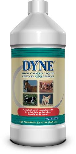 Trophy 32-Ounce Dyne High Calorie Animal Supplement, My Pet Supplies