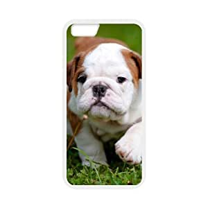 Pink Ladoo? iPhone 6 Case Phone Cover Hard Plastic And Stylish Bulldog Puppy Pattern