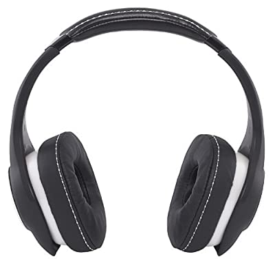 Denon Music Maniac On-Ear Headphones