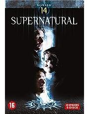 Supernatural-Saison 14 (avec Audio Francais)