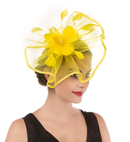 SAFERIN Fascinator Hat Feather Mesh Net Veil Cocktail Tea Party Hat Flower Derby Hat with Clip and Hairband for Women -