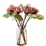 Mynse 2 Pieces 19.7'' Silk Flowers for Home Hotel Display Window Decorate Wedding Supplies Artificial Flowers Protea Wine Red