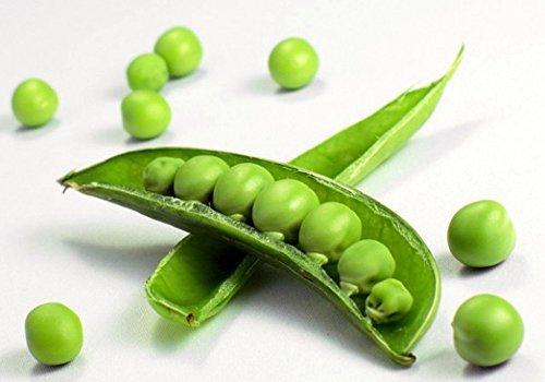 Sugar Snap Peas 400+ Seeds - VALUE PACK! by Hirts: Seed; Vegetable