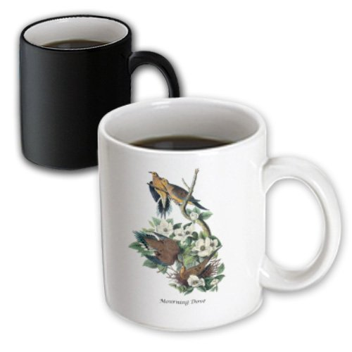 BLN John James Audubon Collection - Mourning Dove by John James Audubon - 11oz Magic Transforming Mug (mug_114067_3)