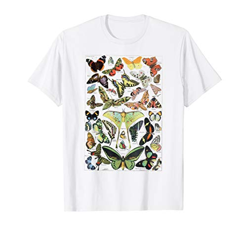 Vintage Butterflies Butterfly Collection T-Shirt scientific