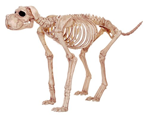 Crazy Bonez Skeleton Dog - Bruiser (Plastic Halloween Dog Skeleton)