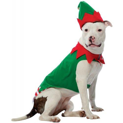 Elf D (Pet Rasta Costumes)