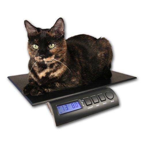 (ZIEIS   15 Lb. Capacity   Digital Pet and Animal Scale   Z15P-DURA1216   12
