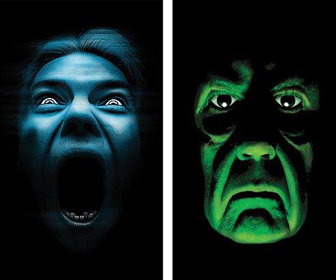 "WOWindow Posters Green Demon Silent Shrieker Halloween Window Decoration Two 34.5""x60"