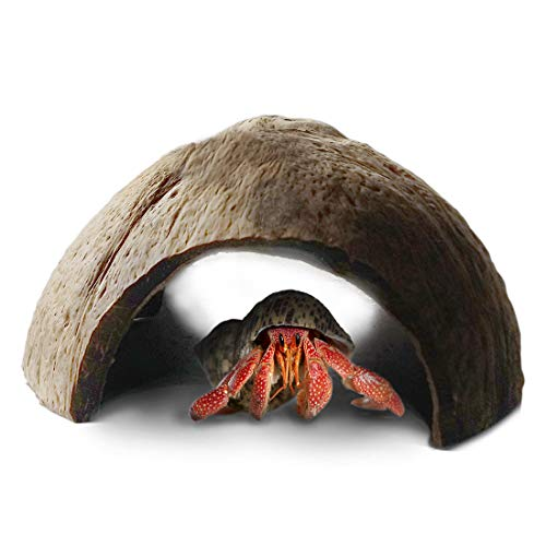 - Eco-friendly Hermit Crab hut -- Pet-safe arthropod's hideout - Natural, spacious Coco tunnel - Maximum Privacy, Ideal breeding ground - Encourages physical activity - Use as hermit cave or climber