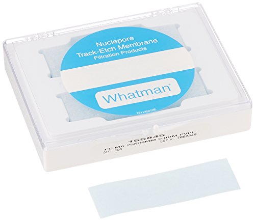 GE Whatman 155845 Polycarbonate (PVP Free) Cell Culture Track Etched Membrane, Circle, 5m Pore Size, 25mm Width x 80mm Length (Pack of 100) by Whatman