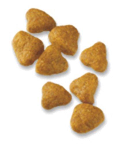 51AfmVX5j%2BL Purina Pro Plan SPORT All Life Stages Performance 30/20 Formula Dry Dog Food - (1) 37.5 lb. Bag